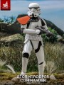 Hot Toys TMS041 - 1/6 Scale Figure - Stormtrooper Commander