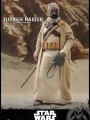 Hot Toys TMS028 - 1/6 Scale Figure - Tusken Raider