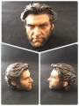 DF Collectibles - Wolverine Head Sclupt - Painted