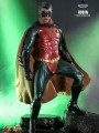 Hot Toys MMS594 - 1/6 Scale Figure - Robin