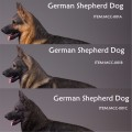 MR.Z - MCC001A/B/C - 1/6 Scale German Sheperd Dog ( 3 Colors )