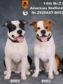 Mr.Z - MRZ029-B001,B002,B003 - 1/6 Scale - American Staffordshire Terrier ( 3 Colors  )