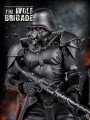 Tit Toys - TT009 - 1/6 Scale Figure - The Wolf Brigade Black Wolf